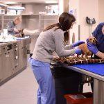 Differences between vet clinics and vet hospitals
